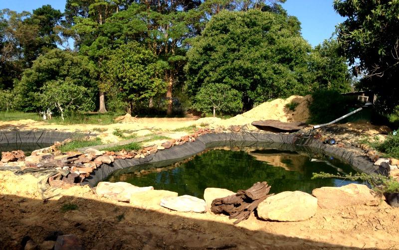 31-dec-landscaping-the-ponds.jpg